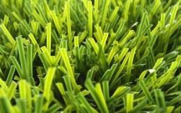 中国体育用品业联合会人造草专业委员会成立