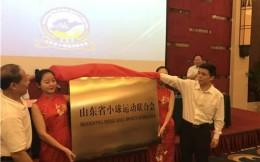 山东省小球运动联合会签约玲珑轮胎 改制后首度联姻社会资本