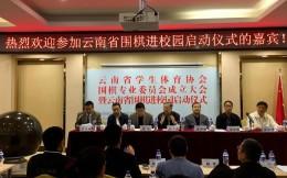 云南发布围棋进校园计划 到2020年欲建成1000所特色围棋学校