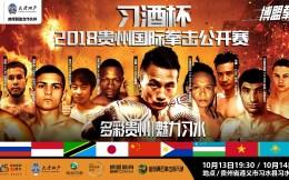十大高手出战贵州国际拳击公开赛,中外对抗展现中国拳击力量