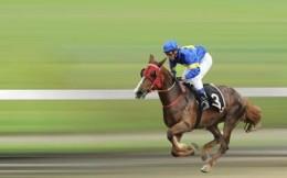 国家发改委:鼓励海南省发展赛马等六项运动 探索发展两类体彩