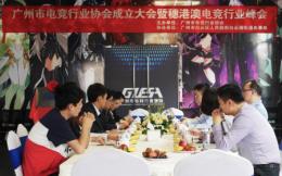广州市电竞行业协会正式成立