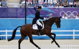 中国马协与法国共谋合作 就备战2020东京奥运共促马术发展