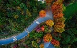 速度与美景同在!2019 第三届中国·金华山水四项公开赛 : 金华山自行车爬坡赛开放报名
