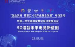 5G时代,共话蓝图 武侯召开西部首个5G+电竞产业论坛
