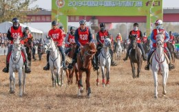 2019中国安平国际马术耐力赛举行中国选手摘得冠军