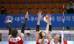 韩国排球联赛提前结束 本赛季没有冠军