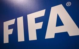 FIFA医疗委员会主席:不建议恢复本赛季比赛