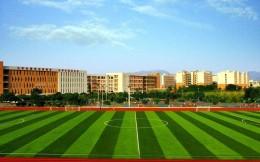 哈尔滨等20个市县成足球场地设施建设专项行动第二批重点推进城市