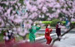 国际武联宣布第四届世界太极拳锦标赛延期举行