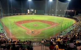 日本职业棒球联赛计划6月下旬开赛