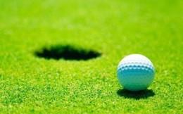 国家发改委:截至2019年底全国共取缔131个高尔夫球场