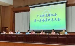 广西壮族自治区成立羽毛球协会