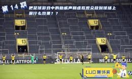 罗聊体育第14期:游戏中的助威声和虚拟观众放到球场上是什么效果?