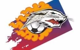 拉萨城投俱乐部发布关于退出中国足球职业联赛的公告