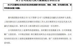 深交所向暴风发函要求说明冯鑫被公诉情况