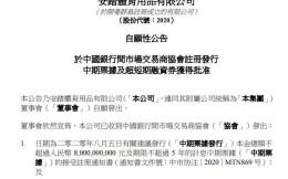 安踏拟发行总计120亿元票据用于优化债务结构