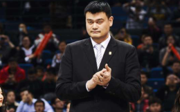 全国青联选举产生新一届领导班子 姚明、霍启刚当选副主席