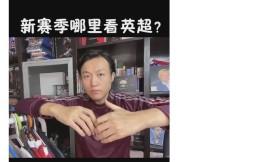 前央视名嘴:中国企业需要把英超版权价格打下来