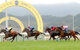 广州从化马场运营两周年 往返粤港马匹总值19.46亿美元
