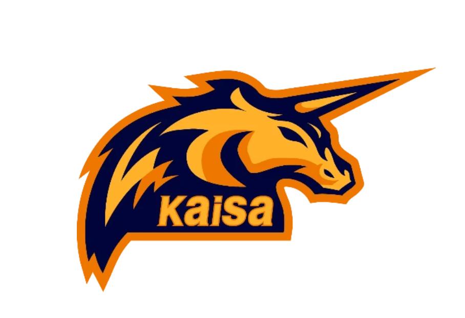 佳兆业Kaisa电竞战队全新亮相,新赛季征战LDL