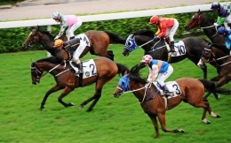 中国马术协会速度赛马委员会召开工作会议:修订速度赛马规则