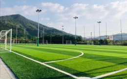 体育总局、国家发改委联合发文要求到2025年社会足球场地全面开放