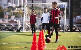 麦斐体育课程预售排队,目标3年10万学员