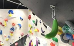 体育培训机构香蕉攀岩获150万元天使轮投资