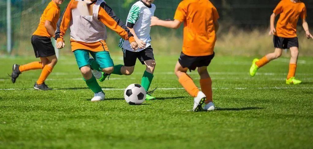 体育总局办公厅关于印发全国足球发展重点城市遴选办法的通知