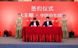 大王椰板材成为中国羽毛球队官方供应商